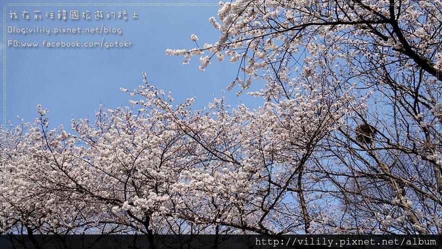 20140330_211.JPG
