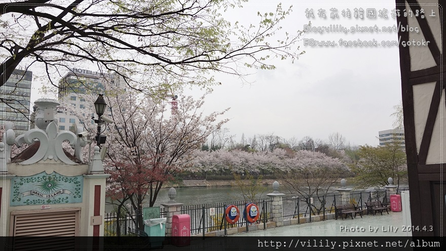 20140403_218.JPG