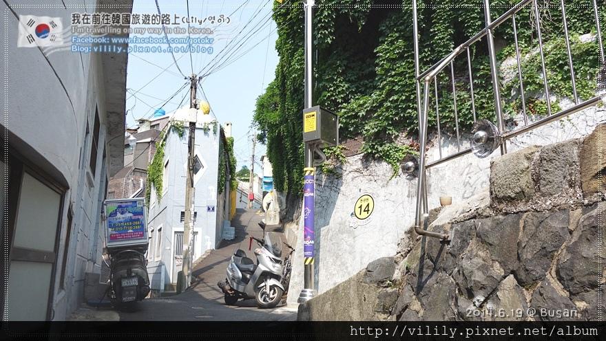 20140619_006.JPG