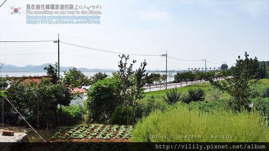 20140909D8_052.JPG