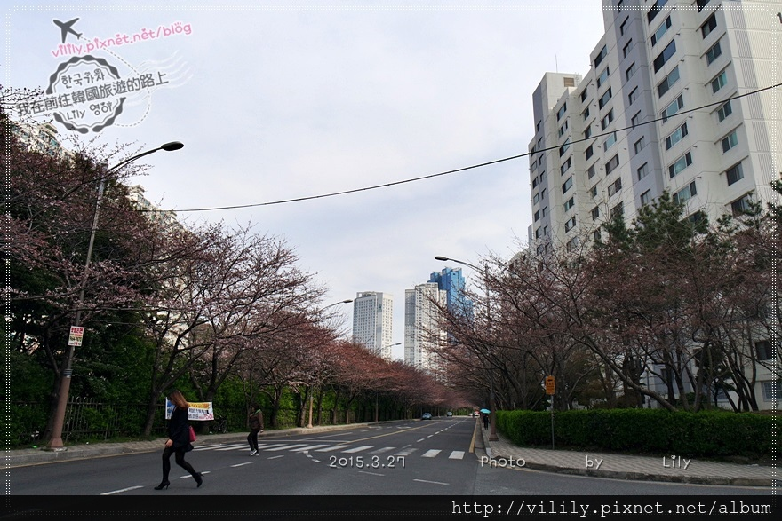 20150327_276.JPG