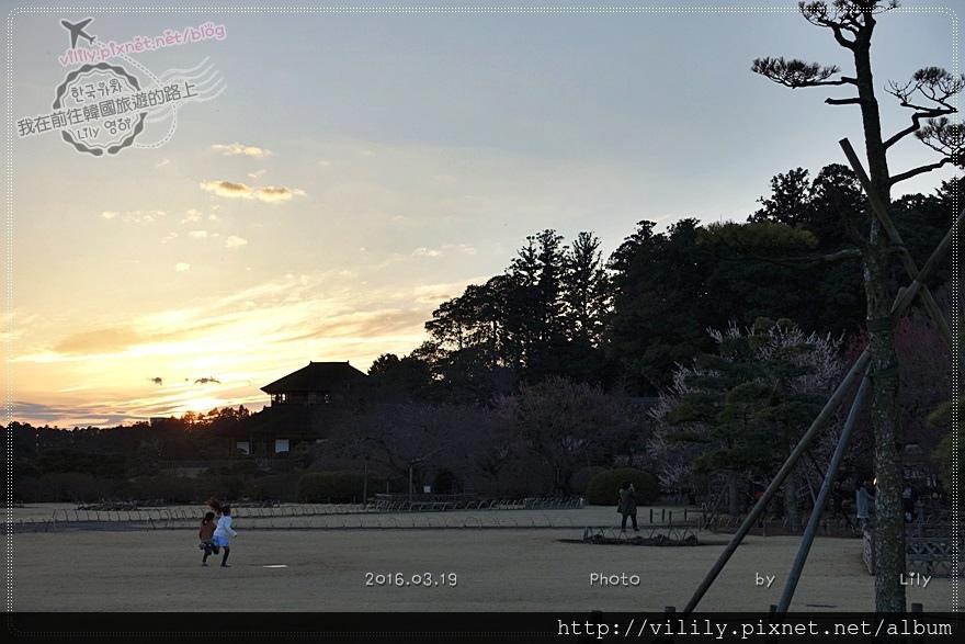 20160319_354.JPG