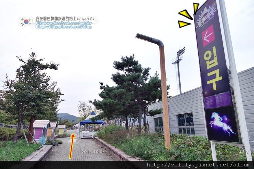 20161004_095.JPG