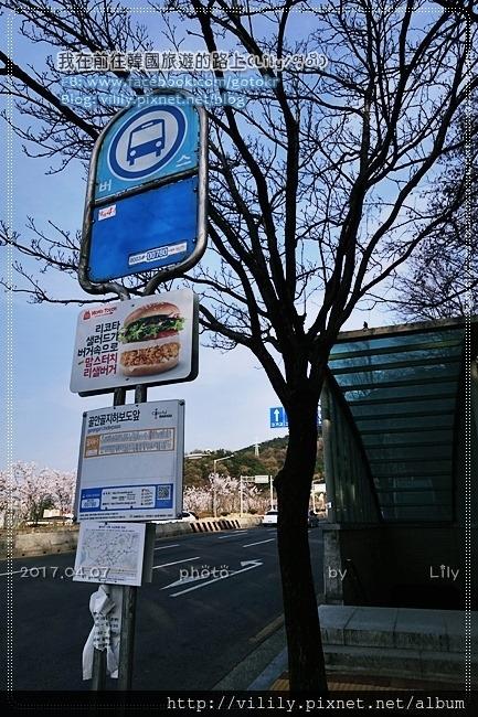 20170407_336.JPG