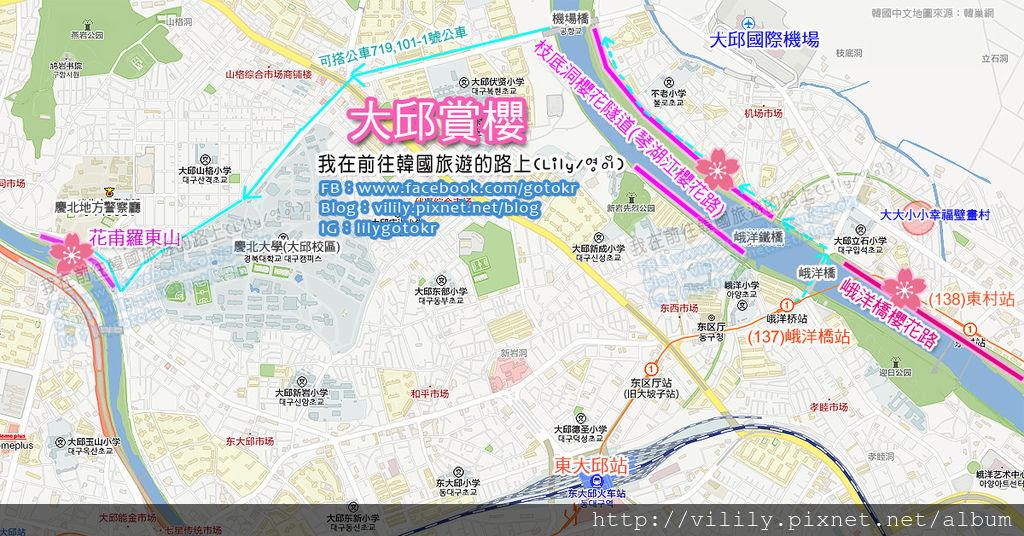 大邱賞櫻-峨洋橋