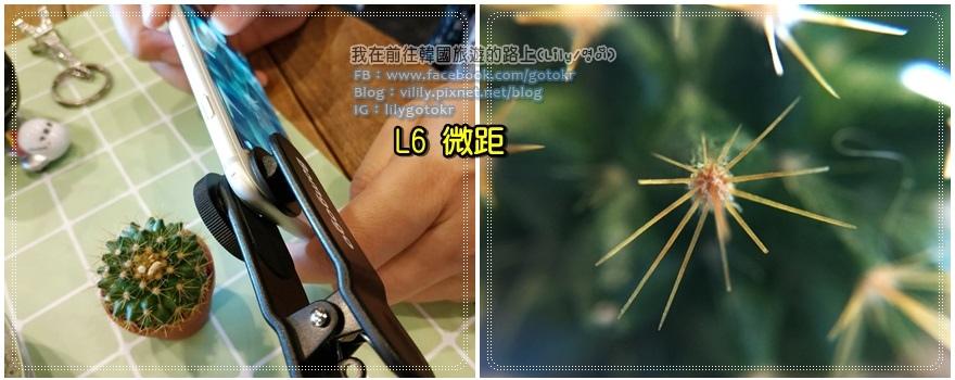 L6micro5.jpg