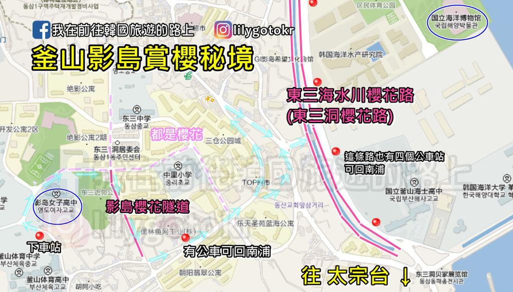 影島櫻花.jpg