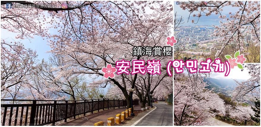 鎮海賞櫻|鎮海安民嶺浪漫賞櫻&春日咖啡
