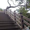 濟州島正房瀑布정방폭포0009.jpg