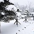 濟州島漢拏山御里牧靈室登山017.jpg