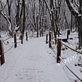 濟州島漢拏山御里牧靈室登山031.jpg