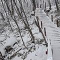 濟州島漢拏山御里牧靈室登山030.jpg