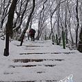 濟州島漢拏山御里牧靈室登山037.jpg