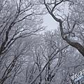 濟州島漢拏山御里牧靈室登山041.jpg