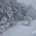 濟州島漢拏山御里牧靈室登山046.jpg