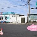 濟州西歸浦山房山油菜花제주 산방산 0002.jpg