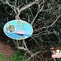 世界自然遺產UNESCO城山日出峰성산일출봉0018.jpg