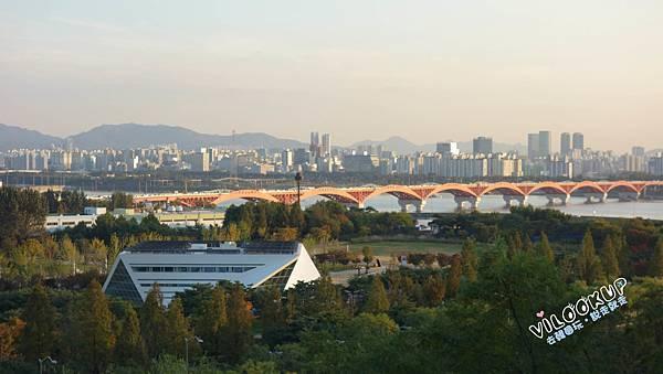 首爾紫芒草慶典서울억새축제天空公園하늘공원0022.jpg
