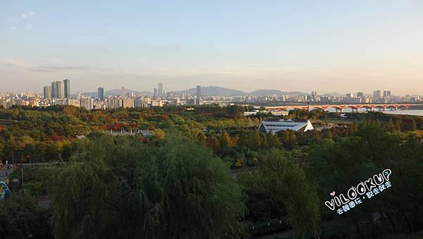 首爾紫芒草慶典서울억새축제天空公園하늘공원0021.jpg