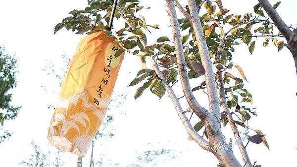 首爾紫芒草慶典서울억새축제天空公園하늘공원0026.jpg
