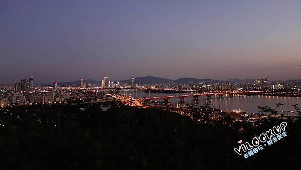 首爾紫芒草慶典서울억새축제天空公園하늘공원0059.jpg