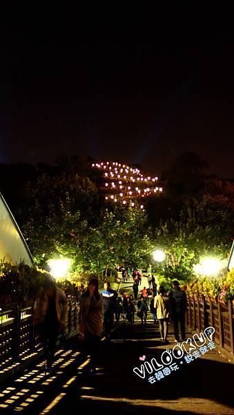 首爾紫芒草慶典서울억새축제天空公園하늘공원z型樓梯夜景.jpg