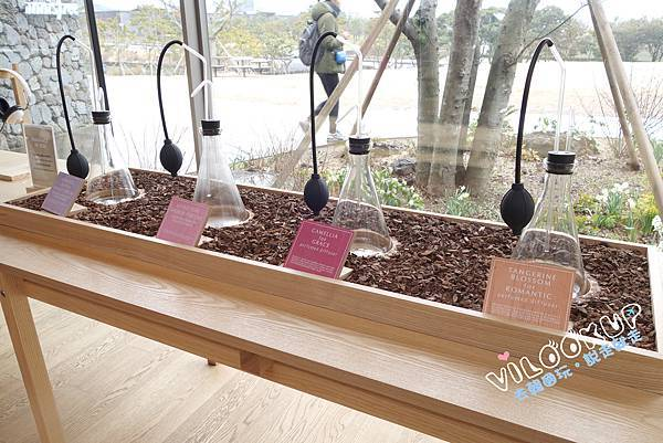 innisfree Jeju house0058.jpg