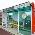 孔劉濟州島月令里仙人掌群落월령리 선인장 군락 (3).jpg