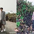 孔劉濟州島月令里仙人掌群落월령리 선인장 군락 (45).jpg