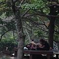 2017秋遊濟州day1日記流水帳 (16).jpg