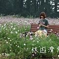 2017秋遊濟州day1日記流水帳.jpg