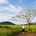 曉星岳極美日落與孤獨的樹 새별오름 (1).jpg
