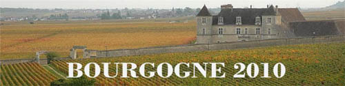 Bourgogne2010Vintagereport_Supplement-head.jpg