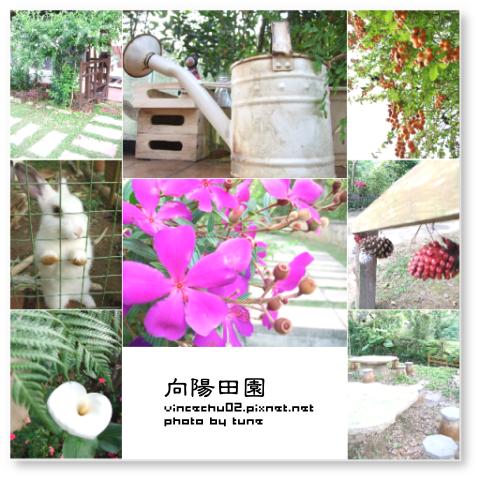 0411_向陽田園.png