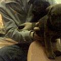 http://pics4.blog.yam.com/19/userfile/v/vincentkao0729/album/14a9f9102ac1db.jpg