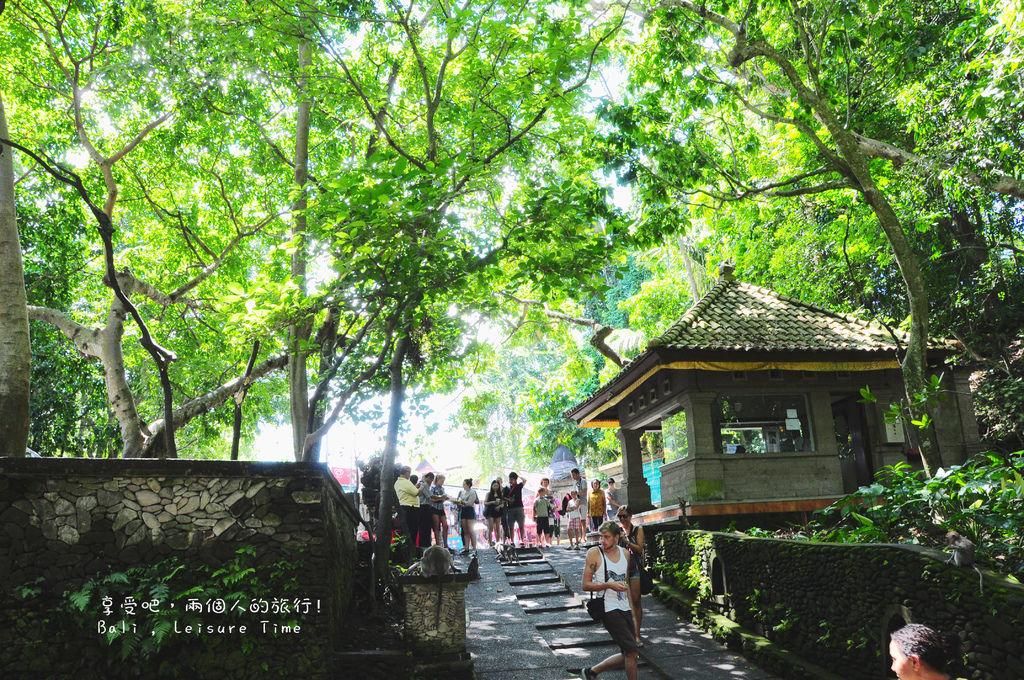 Monkey Forrest Road 39.jpg