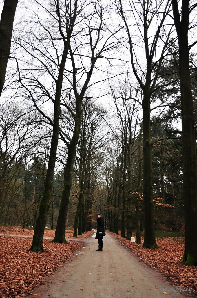 Park Hoge Veluwe KM 26.jpg