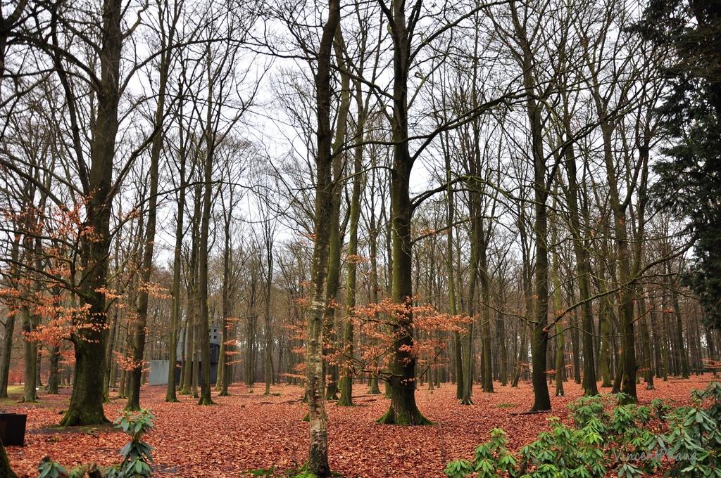 Park Hoge Veluwe KM 28.jpg