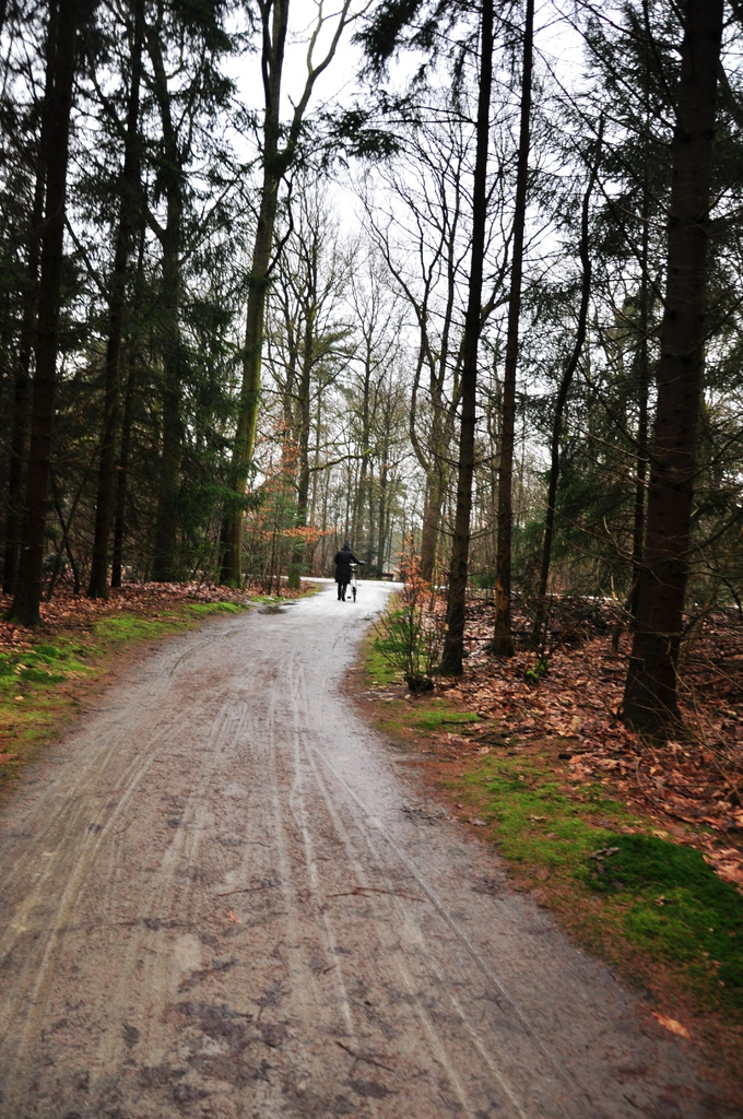 Park Hoge Veluwe KM 33.jpg