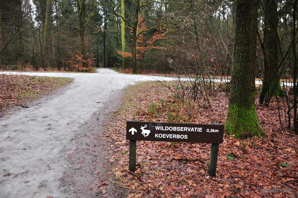 Park Hoge Veluwe KM 34.jpg