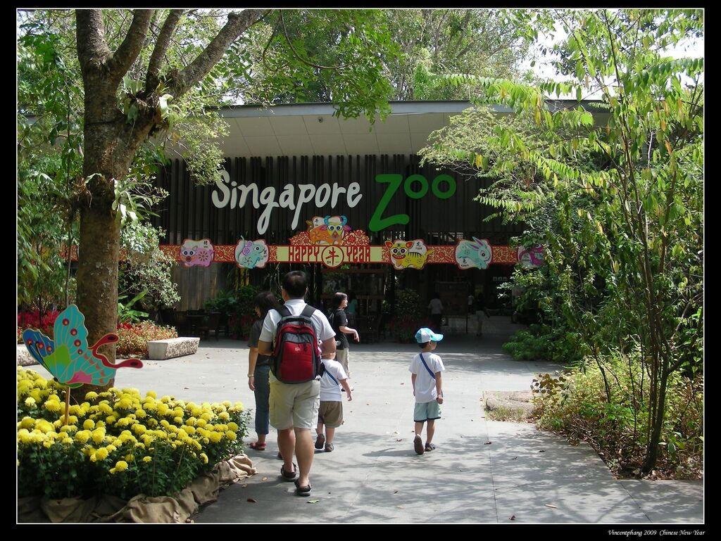 [singapura] Zoo 3.jpg