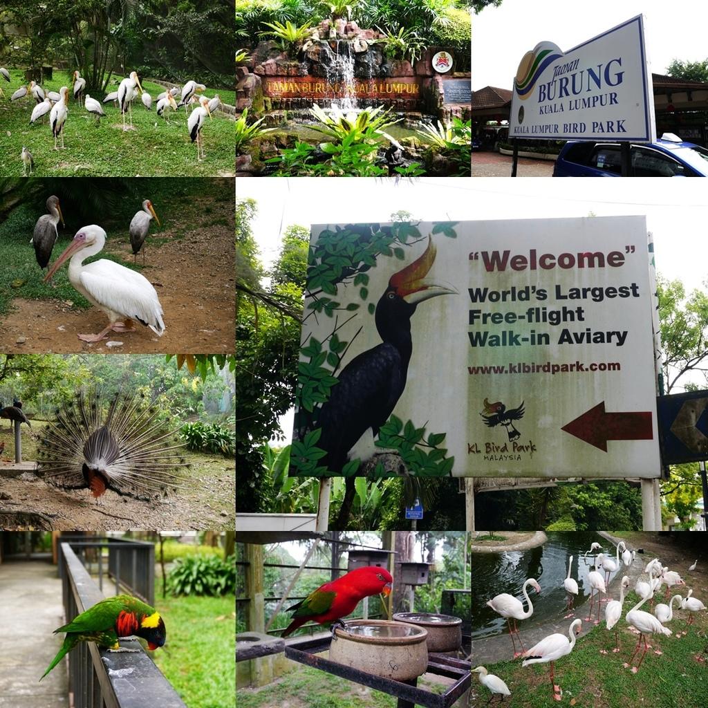 KL Bird Park tittle.jpg