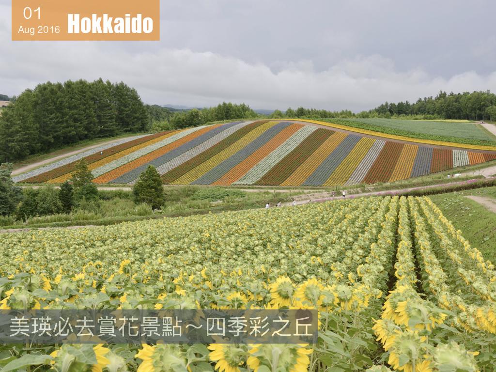 夏日花見北海道 .001.jpeg