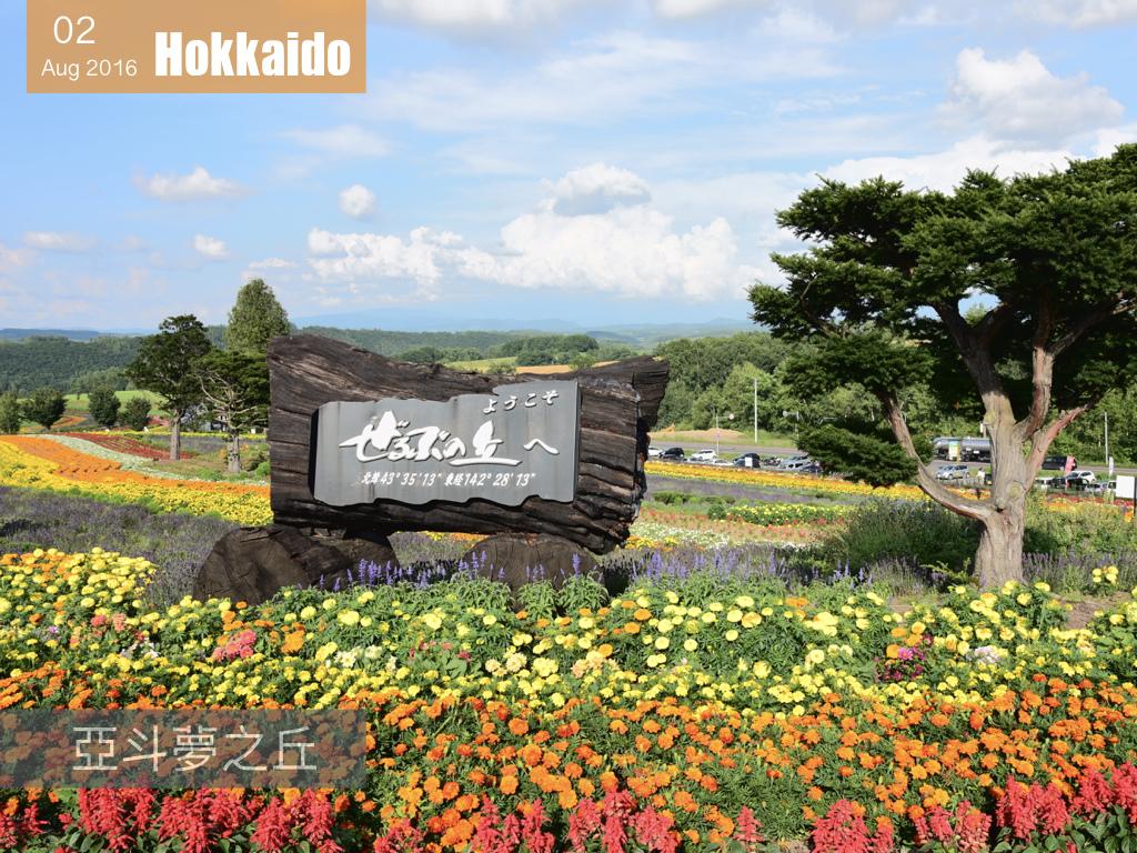 夏日花見北海道 .005.jpeg