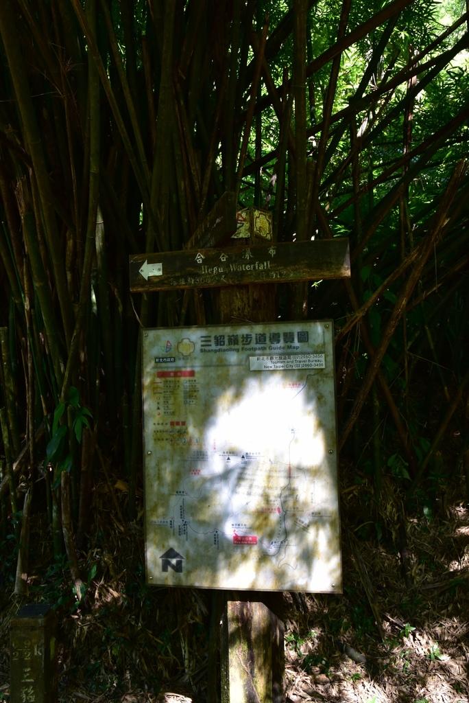 三貂嶺瀑布群步道 20.jpg