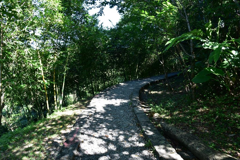 三貂嶺瀑布群步道 18.jpg