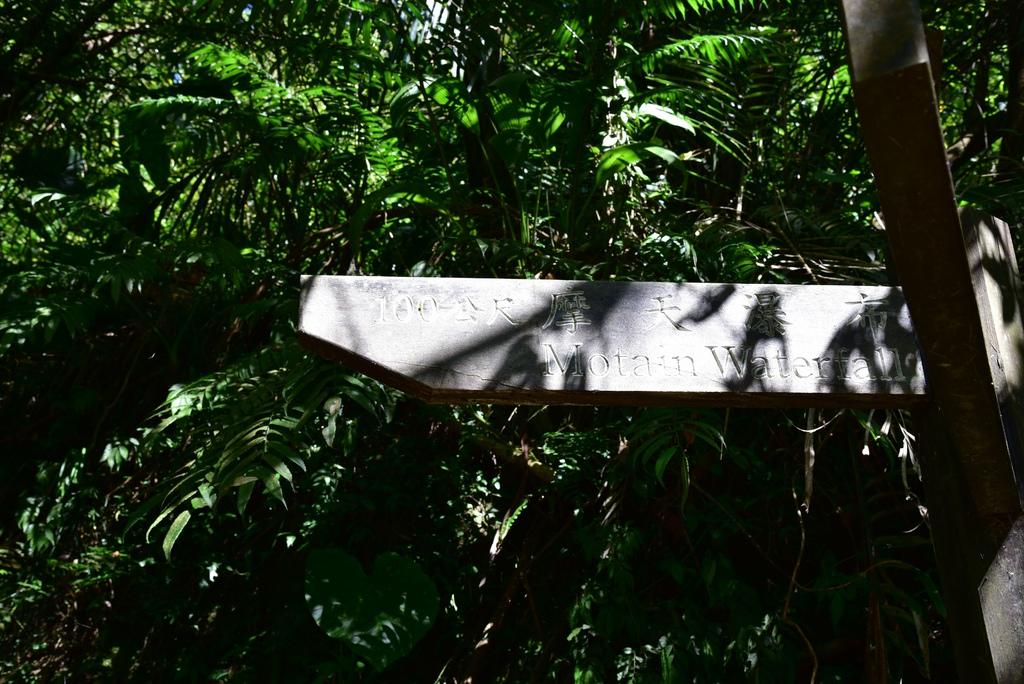 三貂嶺瀑布群步道 31.jpg