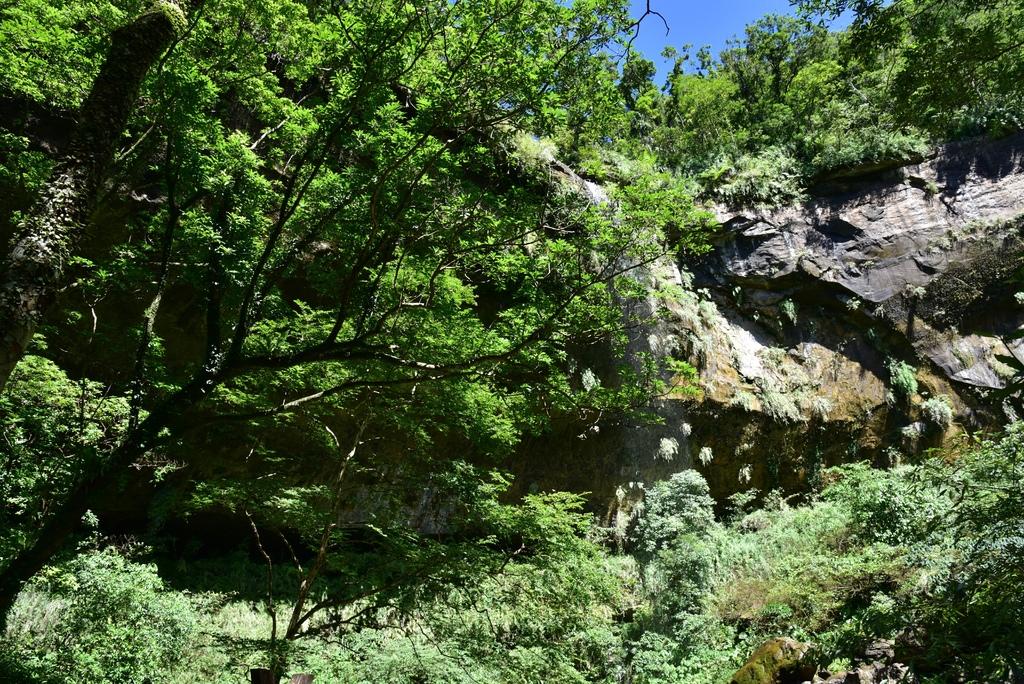 三貂嶺瀑布群步道 33.jpg