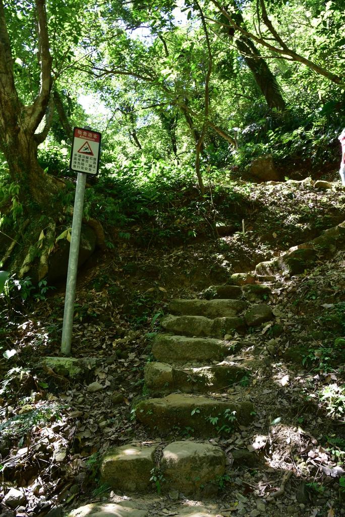 三貂嶺瀑布群步道 37.jpg
