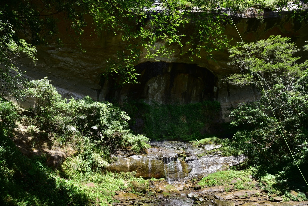 三貂嶺瀑布群步道 43.jpg